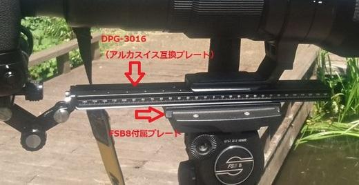 s-20170520_DSC_0066 (3).jpg